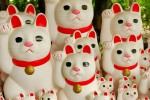 30 Must Have Souvenirs from Japan & Some Travel Tips