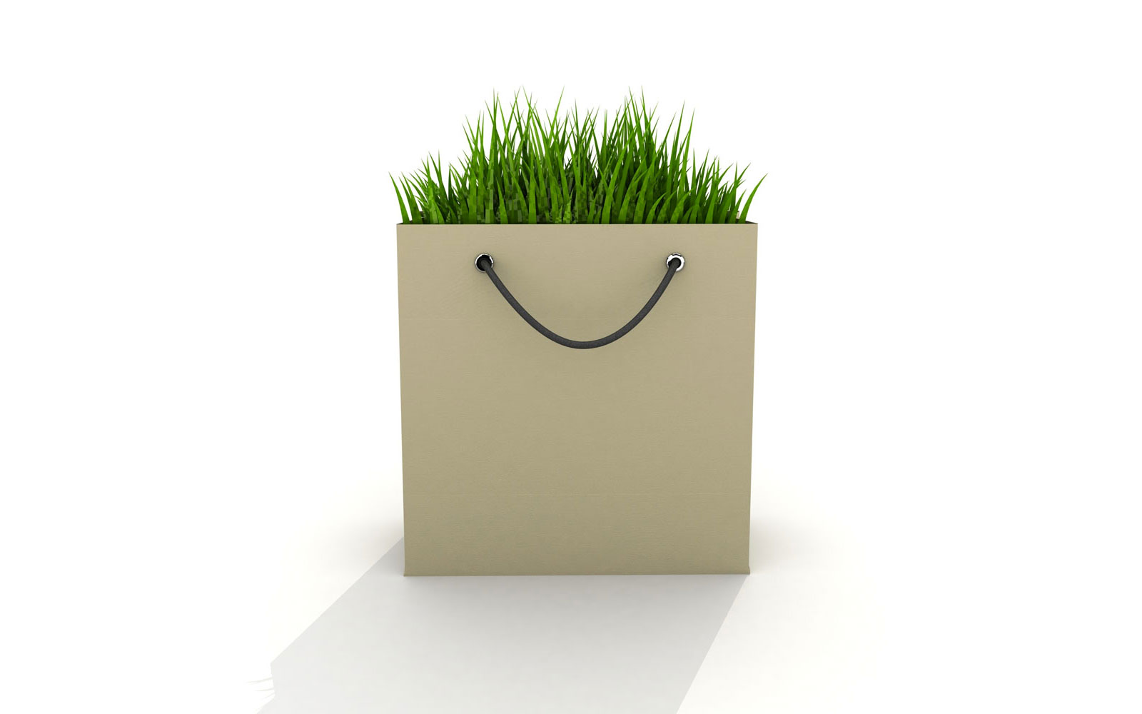 eco-bag