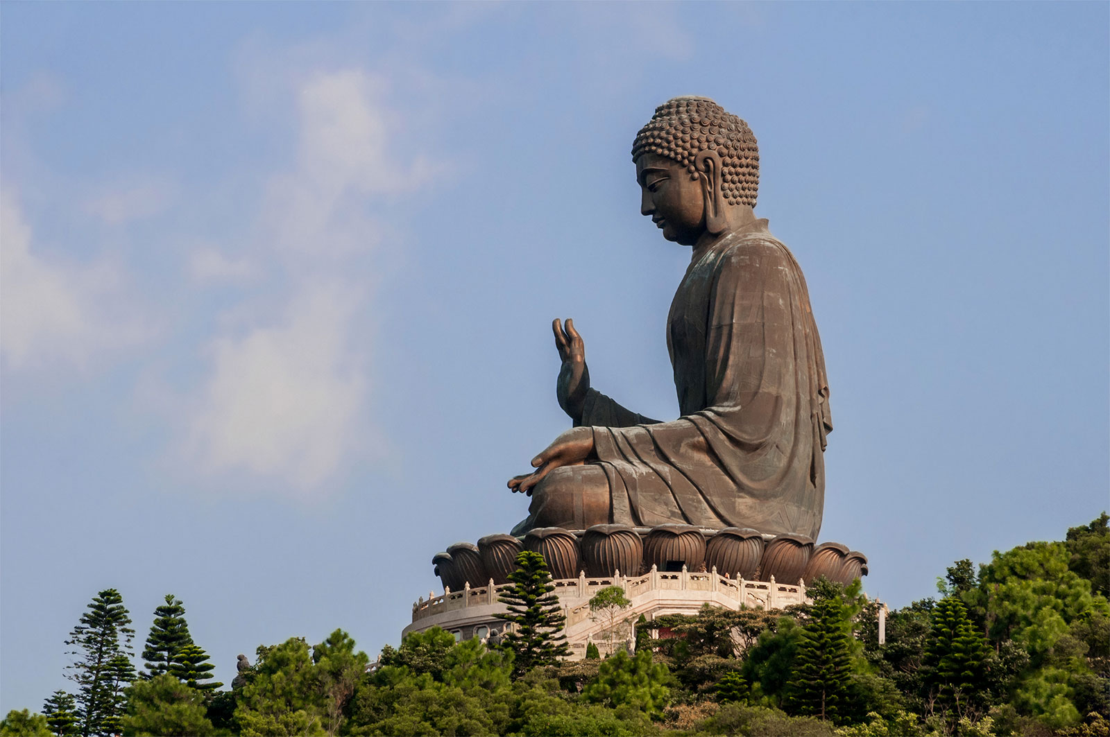 oh-my-buddha