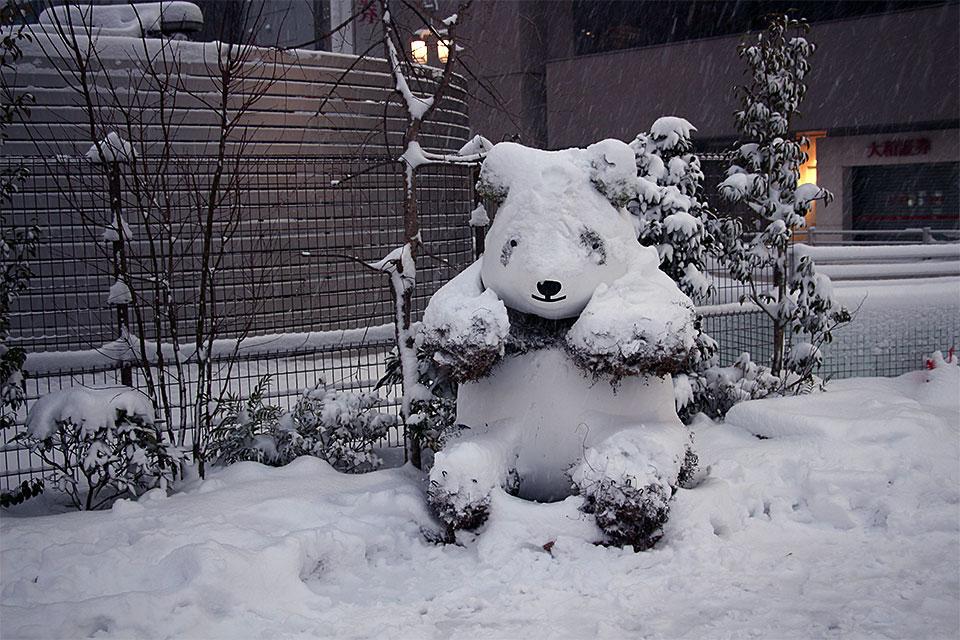 snow_9