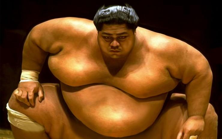 L'enfer de ce bas monde... [Entraînement Solo] - Page 2 Sumo-wrestler-740x462