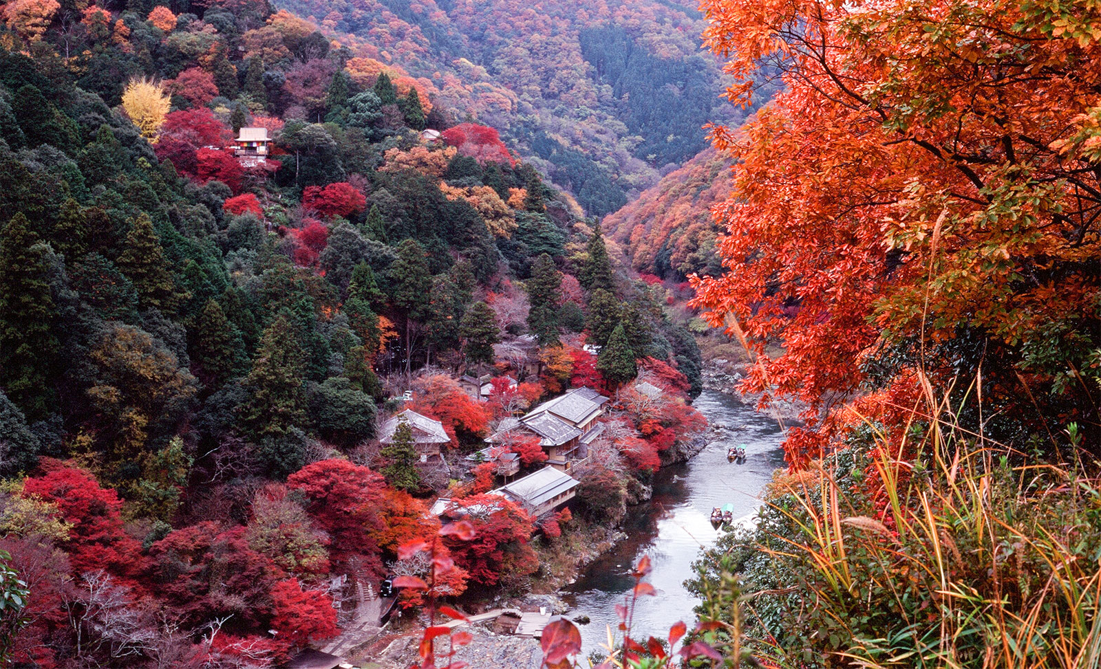 Image Result For All Japanese Pass