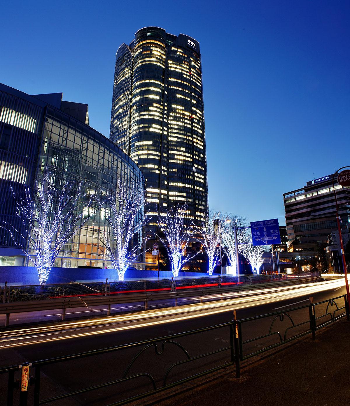 tokyo-illuminations-4