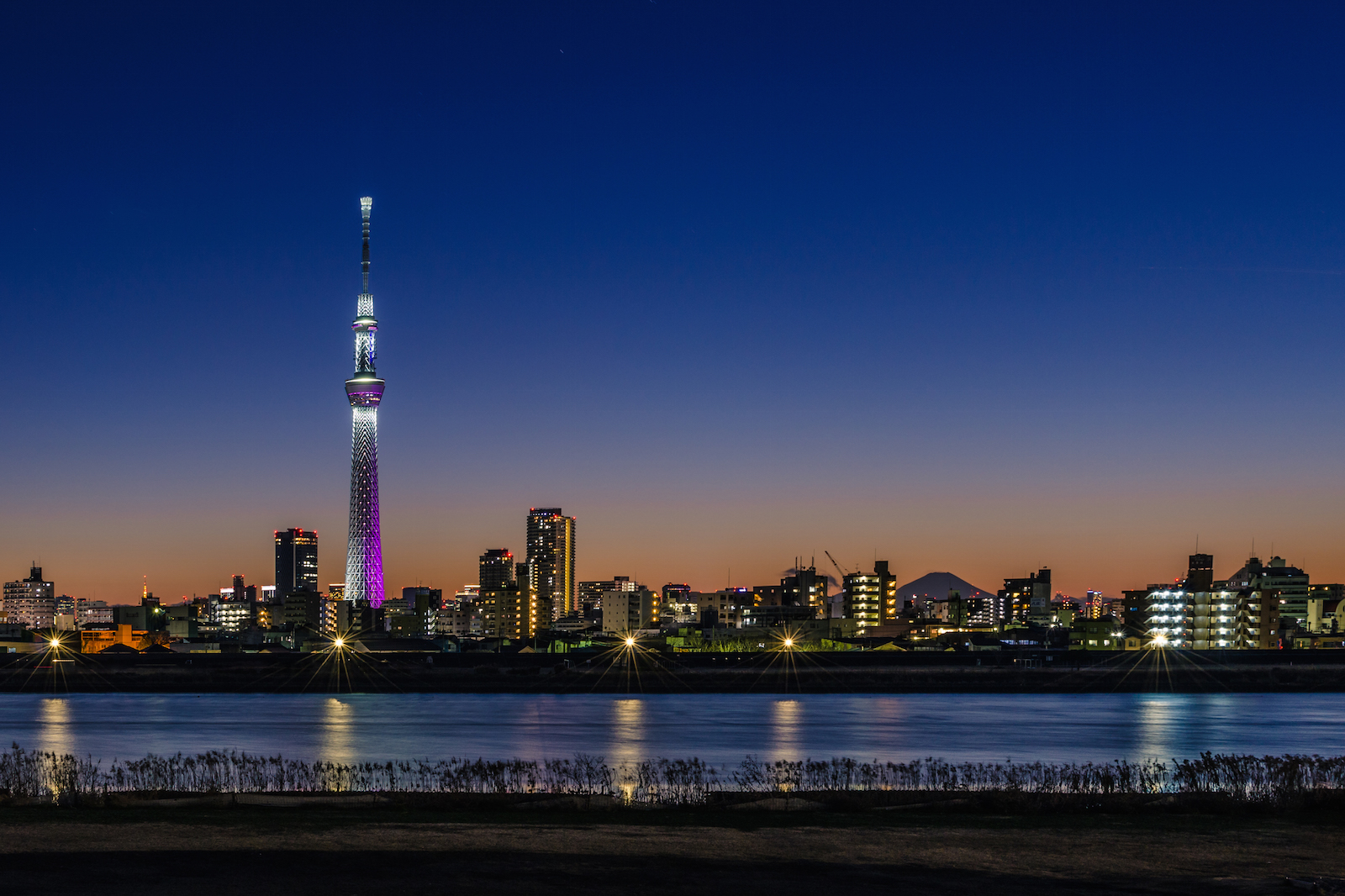 The World S Tallest Tower Tokyo Skytree