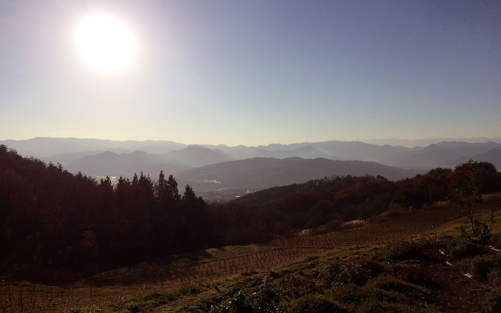 nagano-winery-1