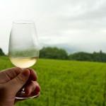 nagano-winery