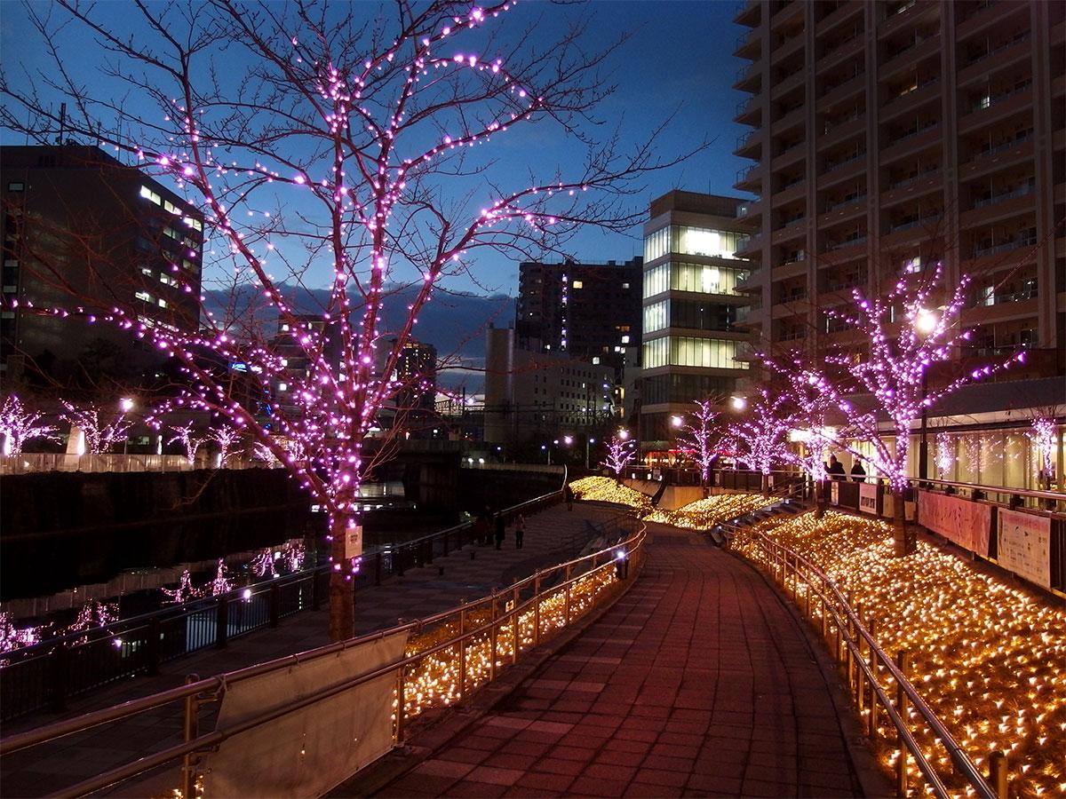 5 Romantic Spots in Tokyo for Valentine's Day