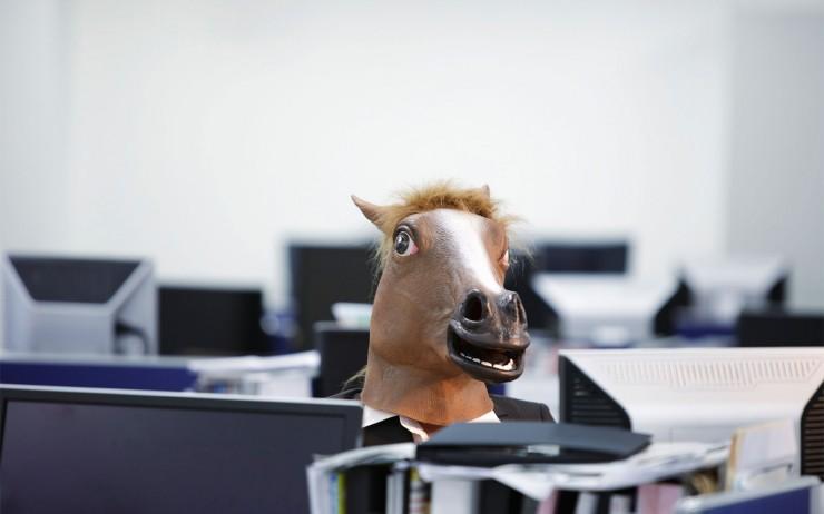 businesshorse