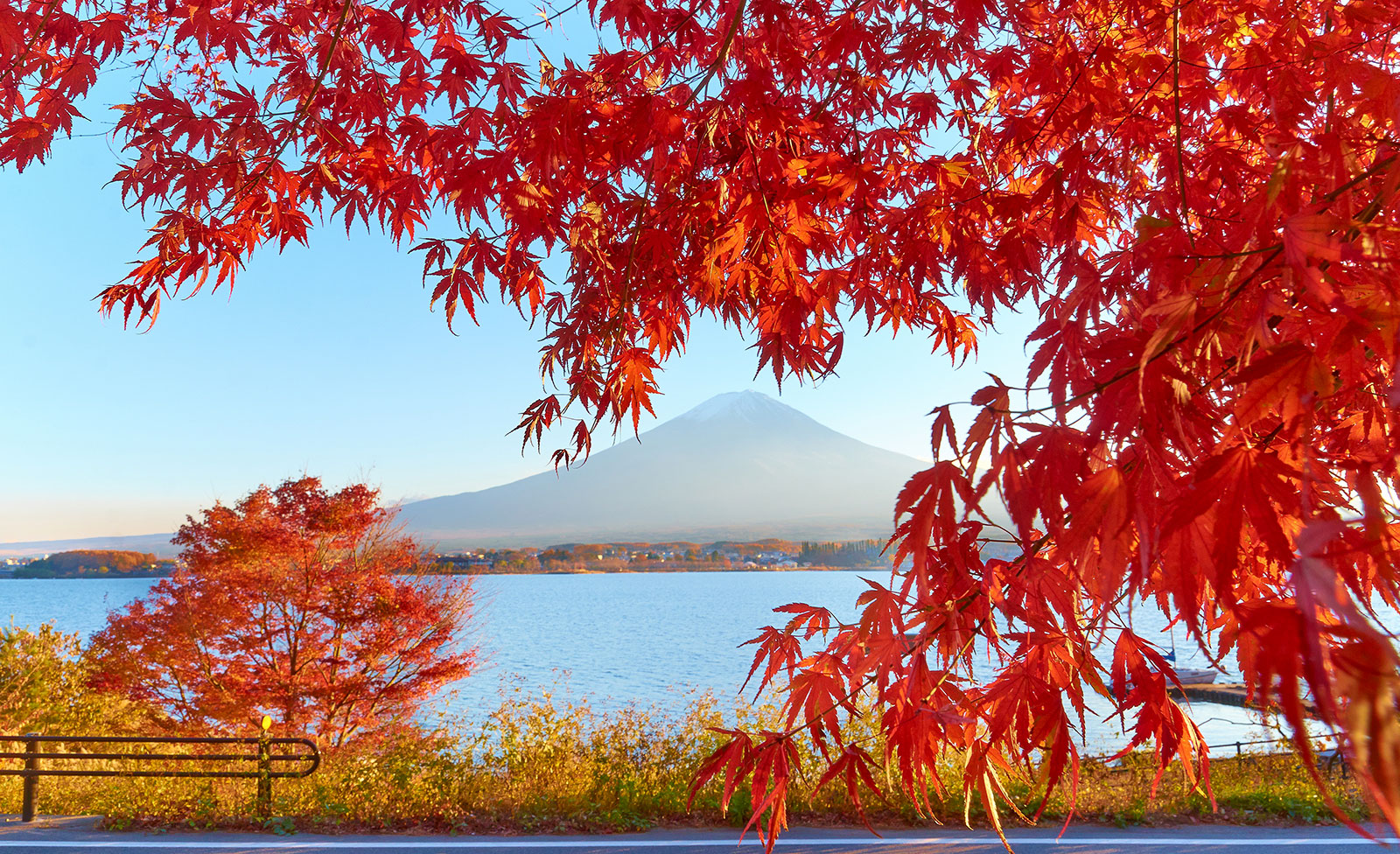Brightest Color In The World Japanese Autumn And Its Foodie Treats Gaijinpot