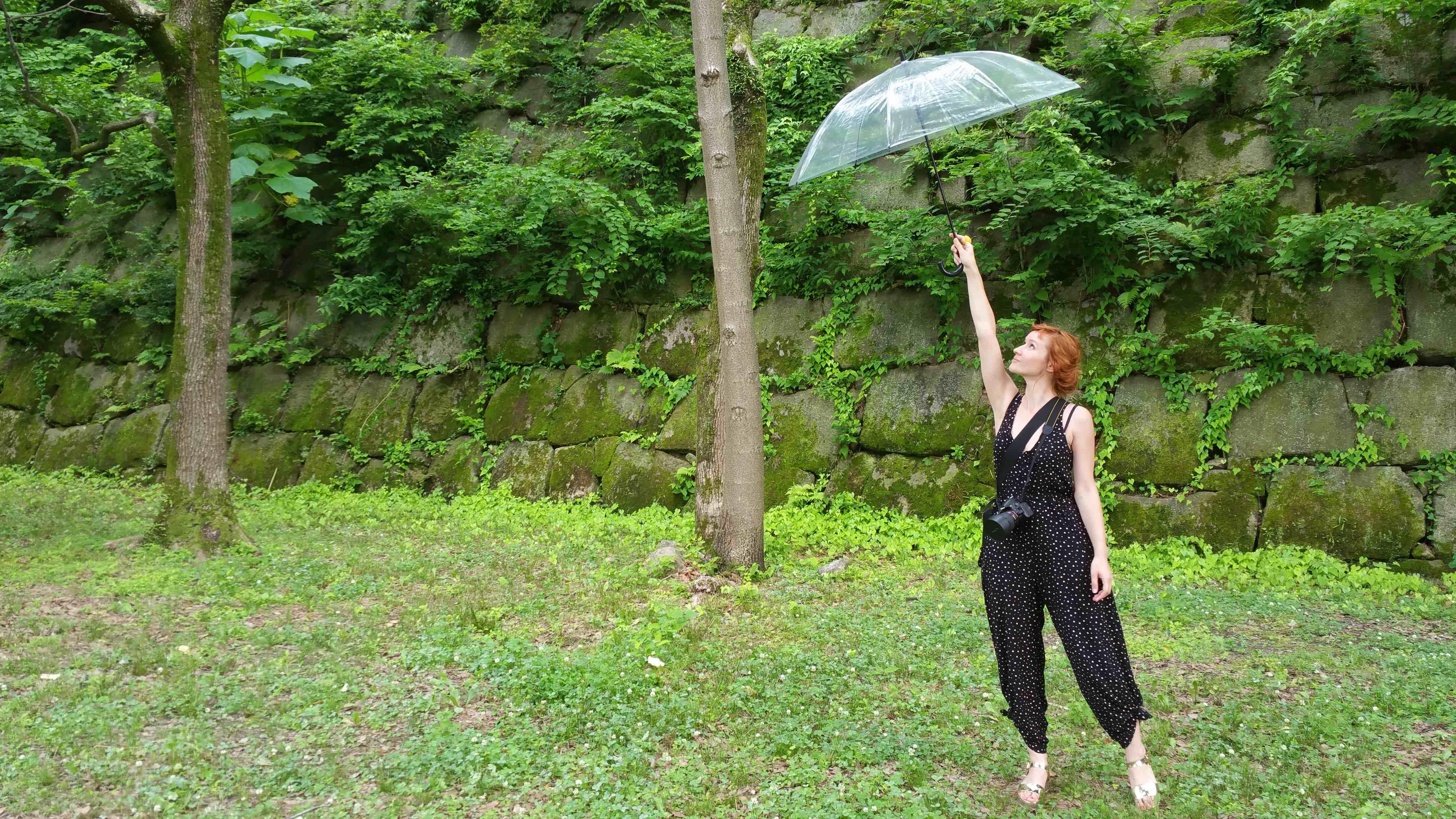 Raluca Umbrella