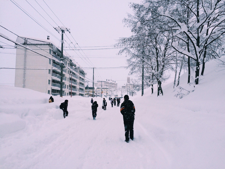 A snowy scene from a school in Hokkaido.