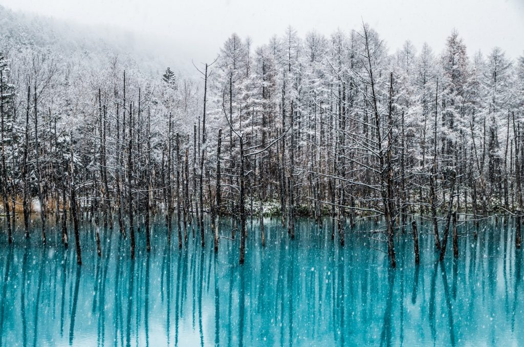 Travel Tales from Hokkaido II