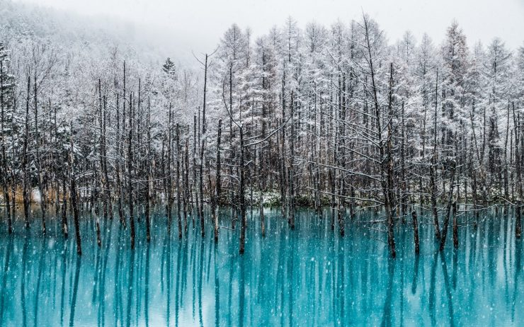 12 Things That Surprised Me About Traveling in Hokkaido