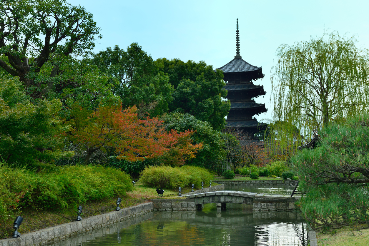 things to do in Kyoto Toji Temple