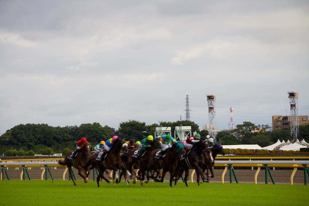 Horses racing at the Tokyo Racecourse