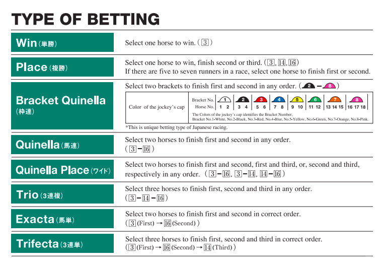 How to bet at the Tokyo Racecourse 2