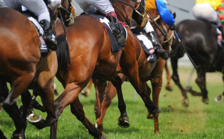 Tokyo Racecourse Heading