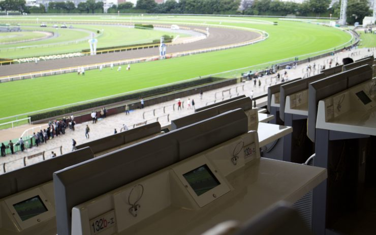 View from the Tokyo Racecourse 3