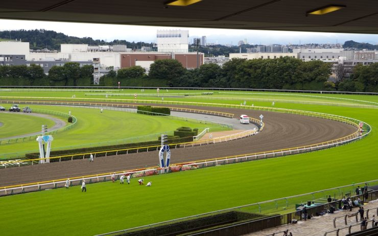 View of Tokyo Racecourse goal post