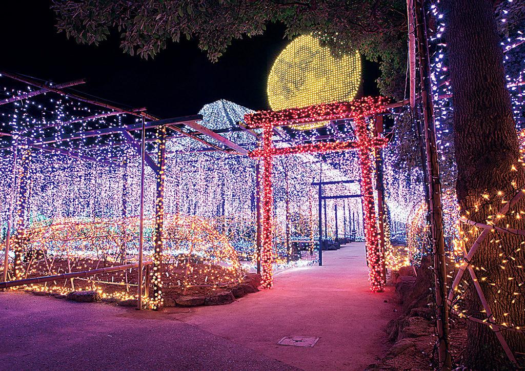 Hasil gambar untuk winter illumination japan