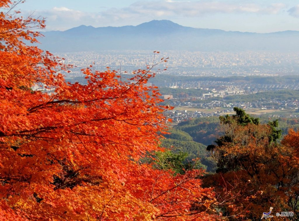 View from Yoshiminedera