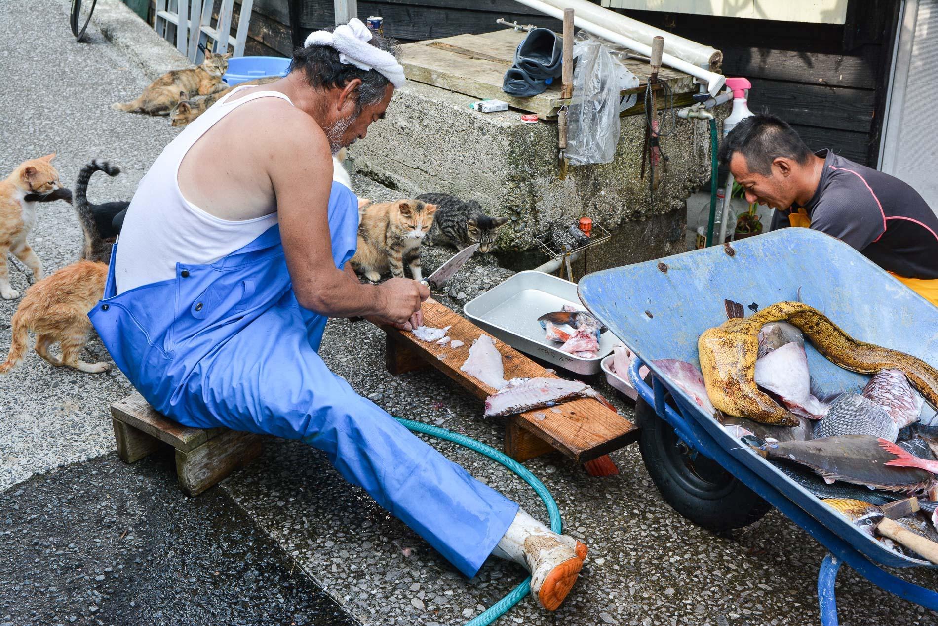 Fukashima fishermen