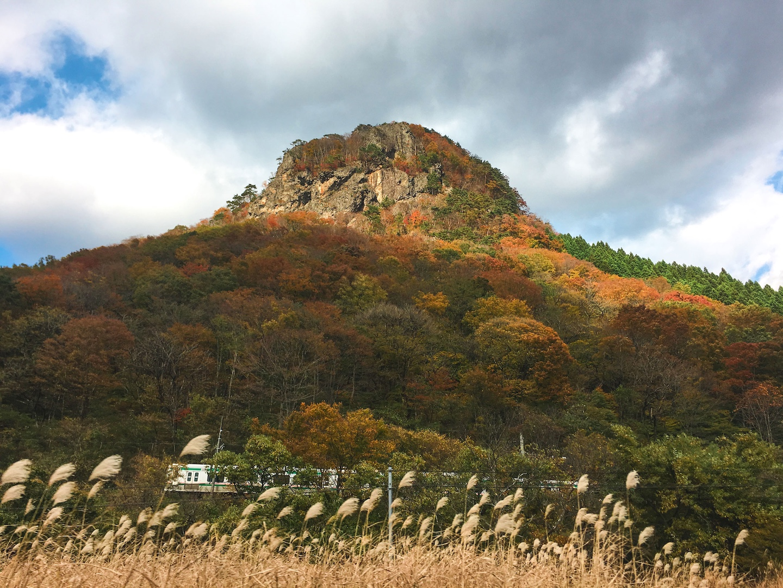Gorilla Mountain Sakunami Onsen
