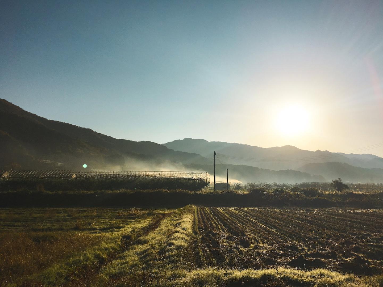 Sakunami Onsen fields in the morning