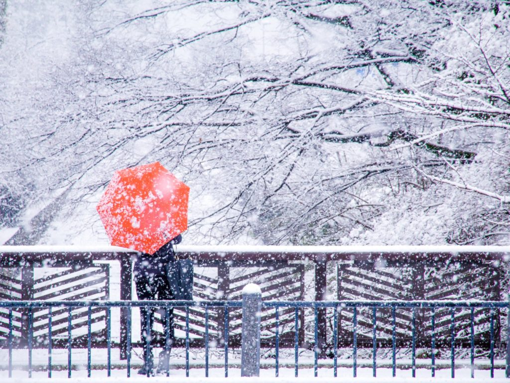 Woman with umbrella in snow in Kyoto