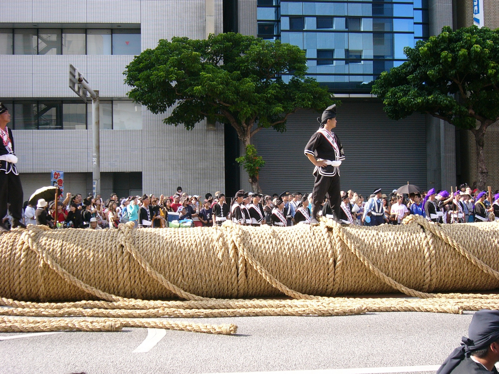The Naha tug of war holds the record for the largest straw rope in the world.