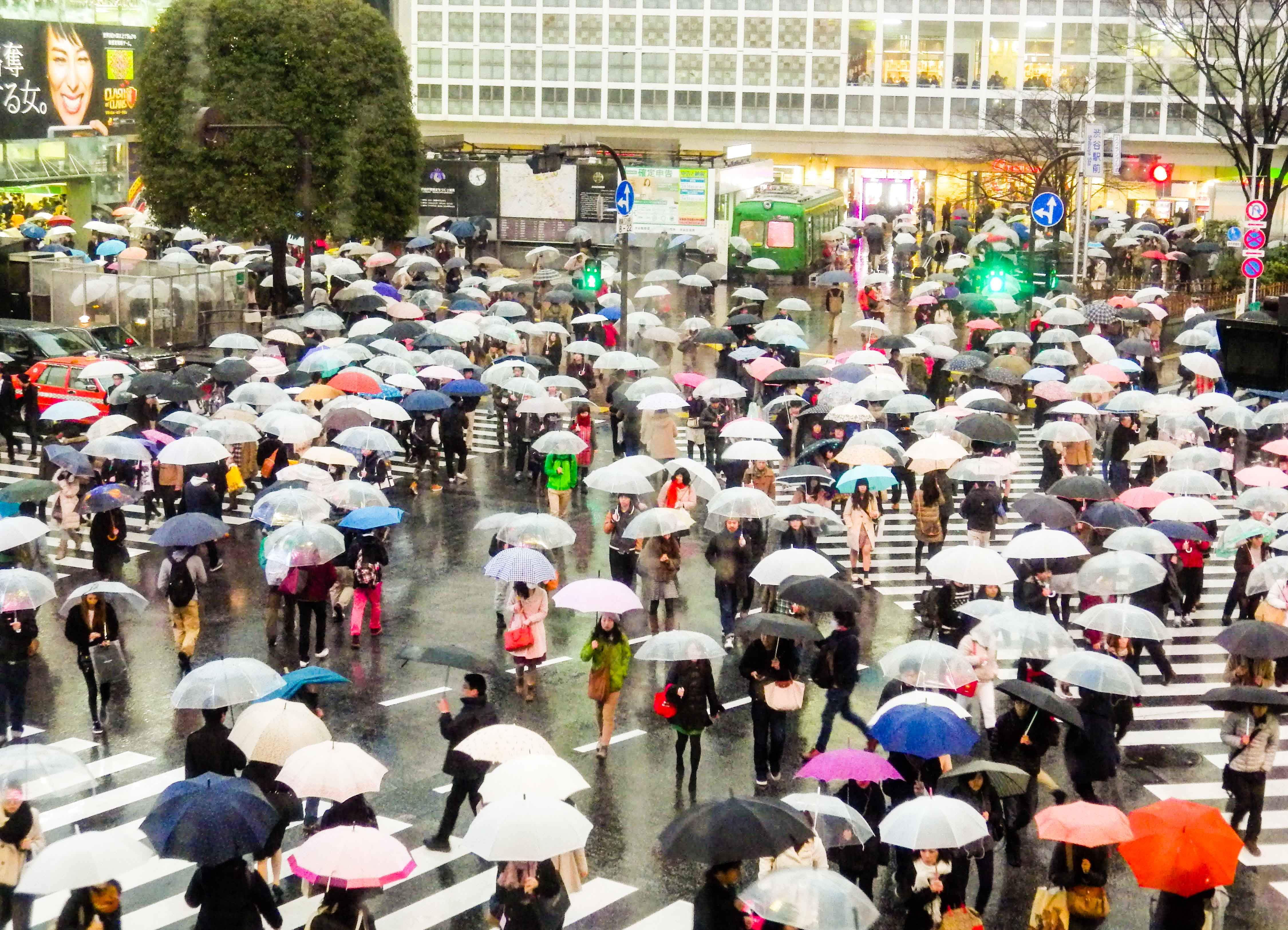 People crossing the Shibuya Scramble with umbrellas in the rain, as seen in Lost in Translation.
