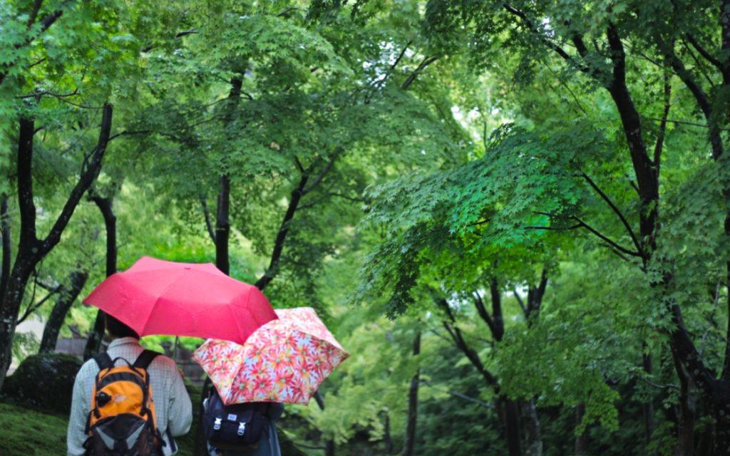 Moss garden at Hakone Art Museum.