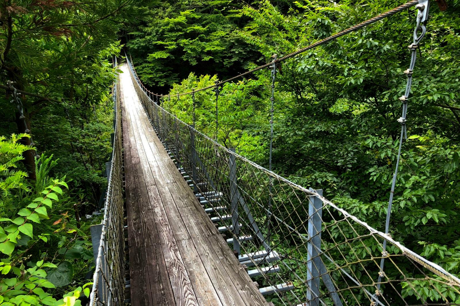 The bridge over the ravine.