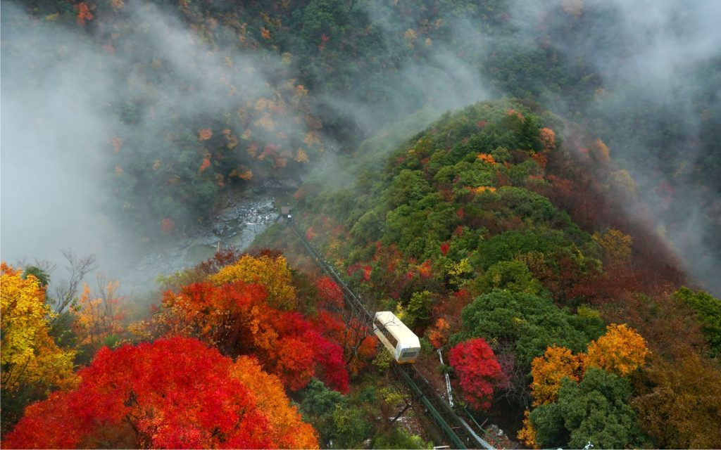 Cable car of Hotel Iya Onsen in autumn