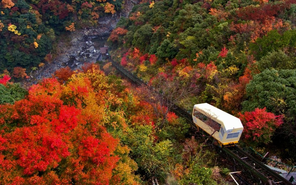 Hotel Iya Onsen Cable Car in autumn