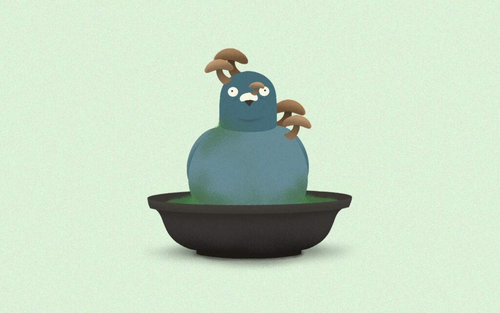 Tweet of the Week #124: Learn How To Grow Mushroom Bonsai