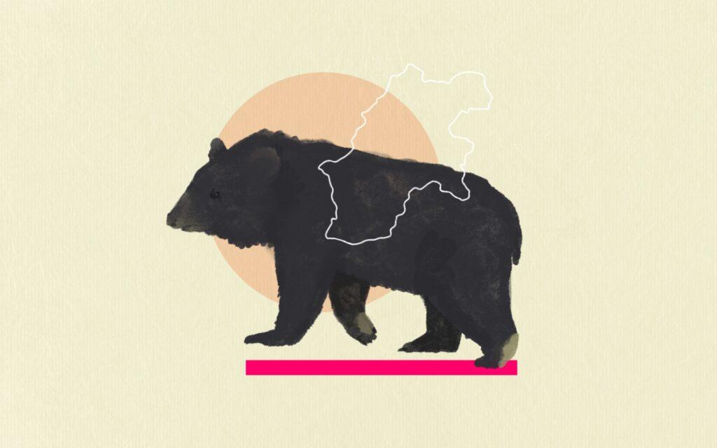 Saving the Bears and People of Nagano