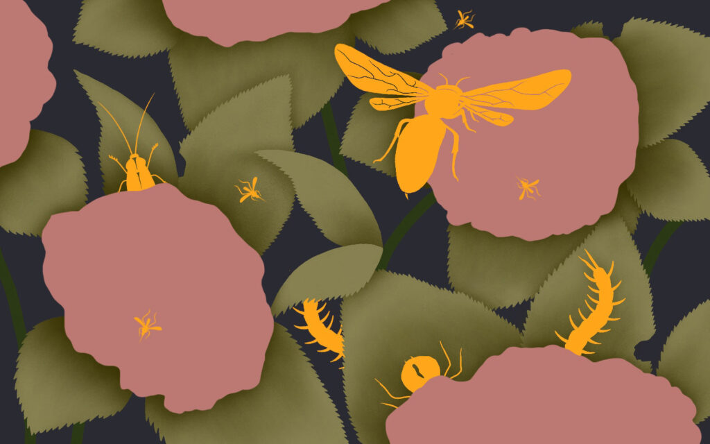 5 Bugs To Avoid During Summer in Japan