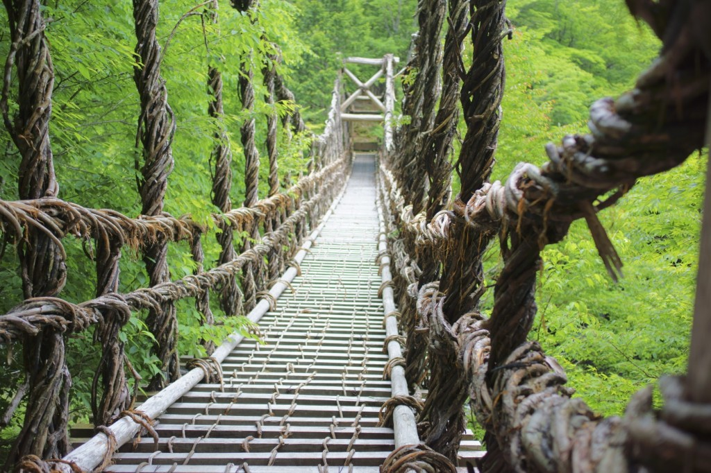 Kazura vine suspension bridge in Iya Valley, Shikoku, Japan