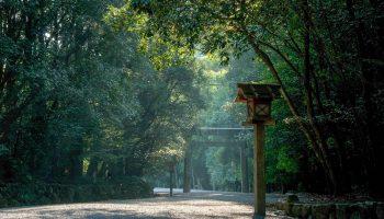 The Naiku of the Ise Jingu enshrines the sun goddess Amaterasu, the mother of the Japan.