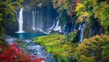 Autumn scene of Shiraito waterfall